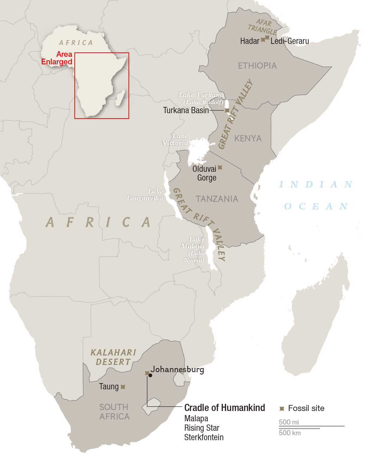 Where Is the Birthplace of Humankind? South Africa and East Africa ...